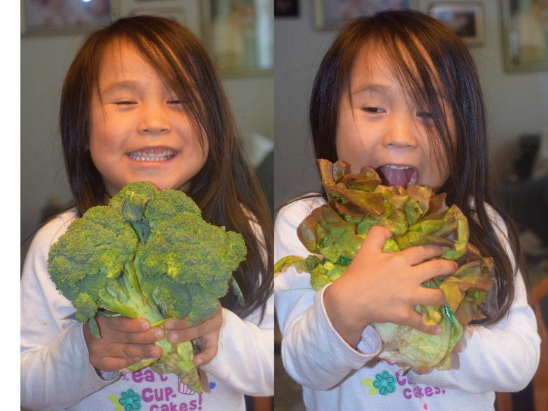 lettuce-and-broccoli