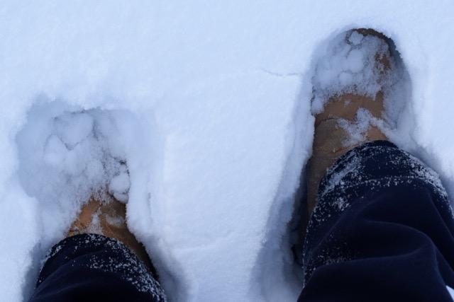 Snow in Brevig Mission