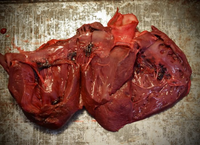 Creative Cooking: Caribou Heart and Tongue Soup