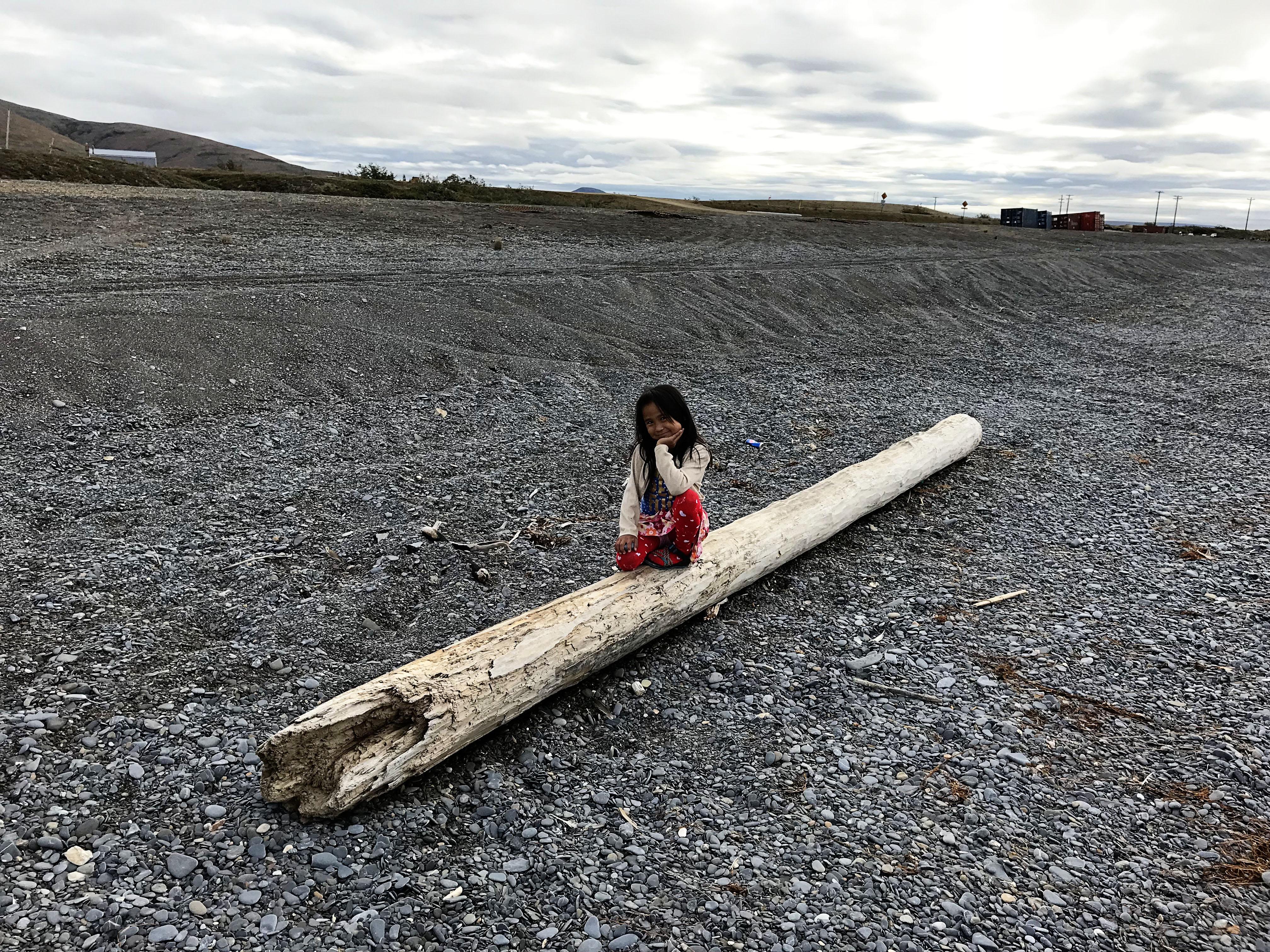 Back to the Alaska Bush Driftwood
