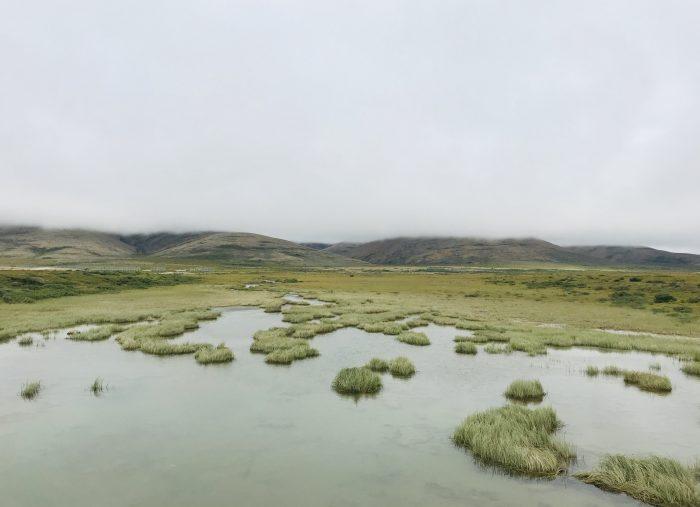 A Little Bit of Summer in the Alaska Bush